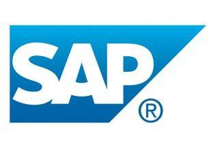 המיישמים החדשים של SAP Business One
