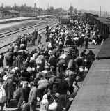 מנציחים אונליין: תערוכות שעוסקות בשואה ברשת