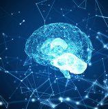 הקלדה מהמוח – אבן בדרך להשתלטות מלאה של האח הגדול