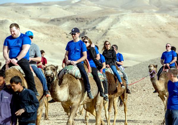 טיול גמלים במדבר יהודה. צילום: ויקטור לוי