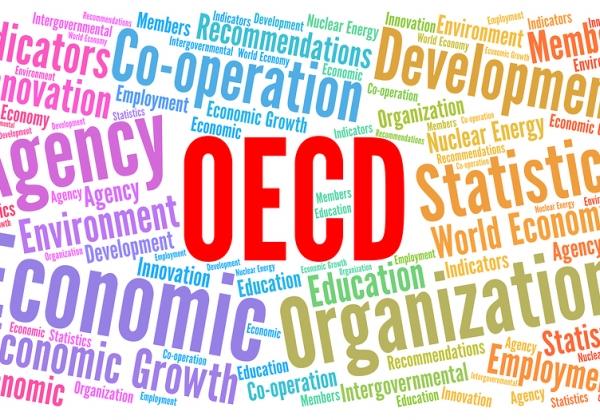 השכר תקוע? ענקיות ההיי-טק אשמות, על פי ה-OECD. אילוסטרציה: Big